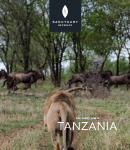 Tanzania-country-guide.png