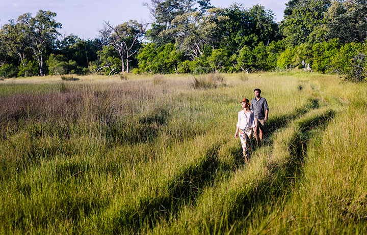 Botswana Walking Safari.jpg